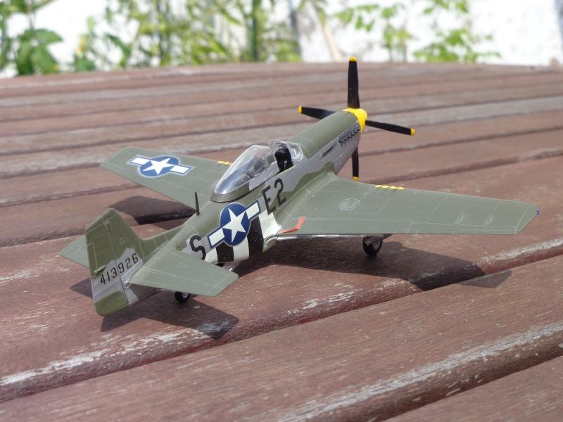 Mustang P-51 D Dsc00412