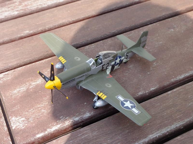 Mustang P-51 D Dsc00413