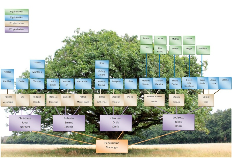 arbre généalogique Geneal12