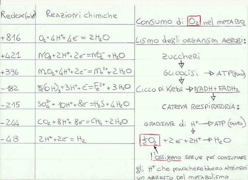 CHIMICA DEL TERRENO e substrati Substr11