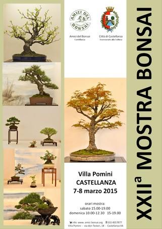 XXII° Mostra Bonsai - Castellanza Mostra10