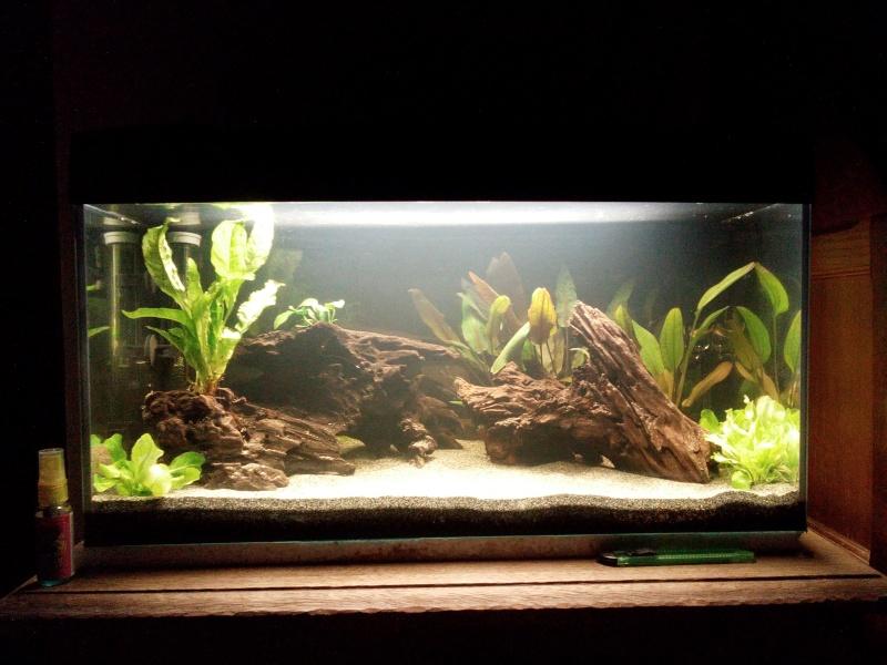 54 litres - Hugo64 Img_2012