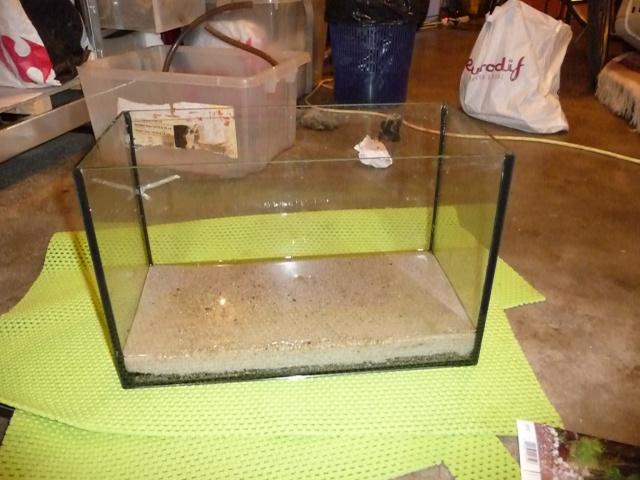 Mini fishroom - en cours P1340014