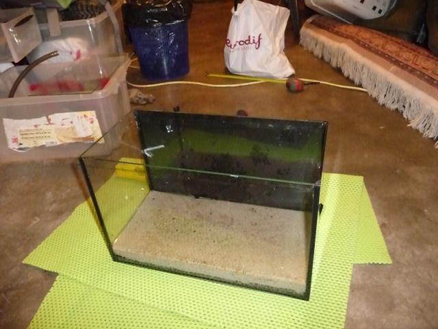Mini fishroom - en cours P1340015