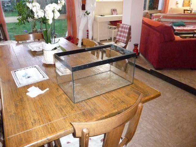 Mini fishroom - en cours - Page 2 P1340026