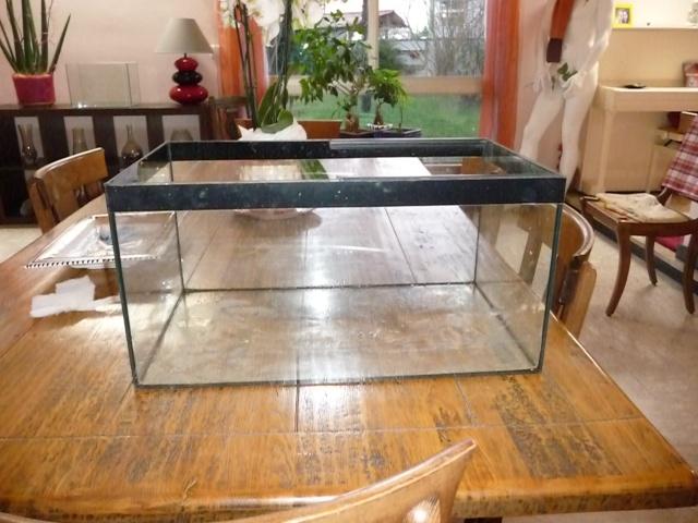 Mini fishroom - en cours - Page 2 P1340027