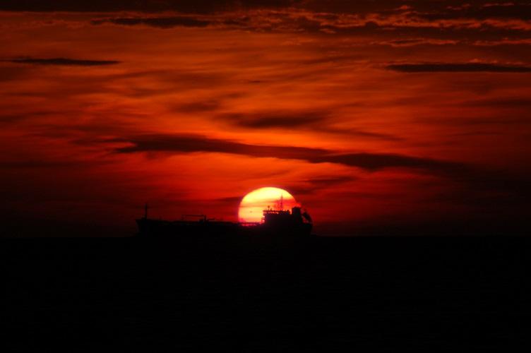 Mon Île du soleil levant - Page 6 Pic07811