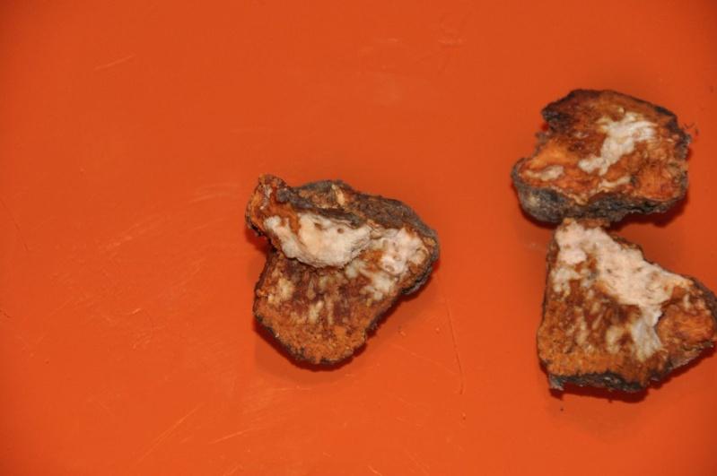 Tumori radicali Prunus22