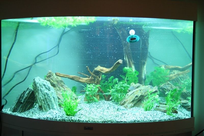 SeeNHiA - Aquarium d'angle 190L T190_m11