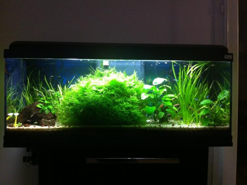 Mes Bacs Aquari12