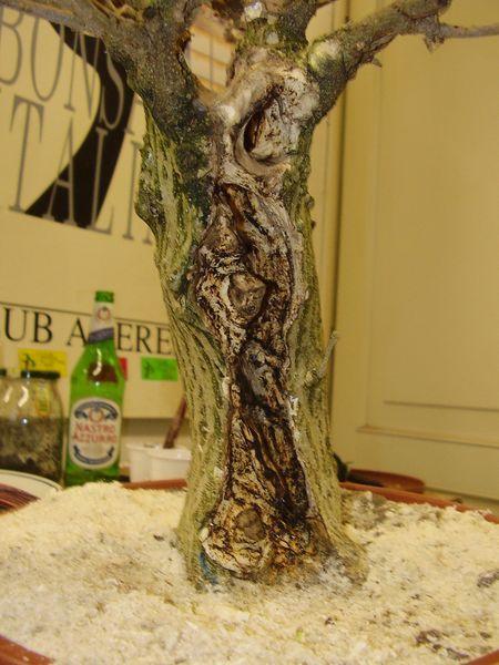 W.I.P. Hibiscus Syriacus scopa... a tronco cavo - Pagina 2 Appunt13