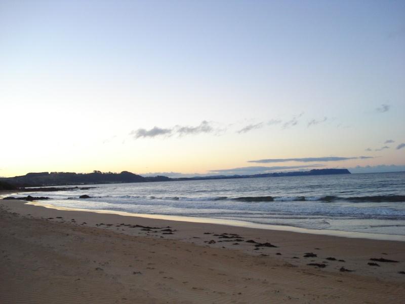 Tasmania 2014 - Page 3 Dsc08318