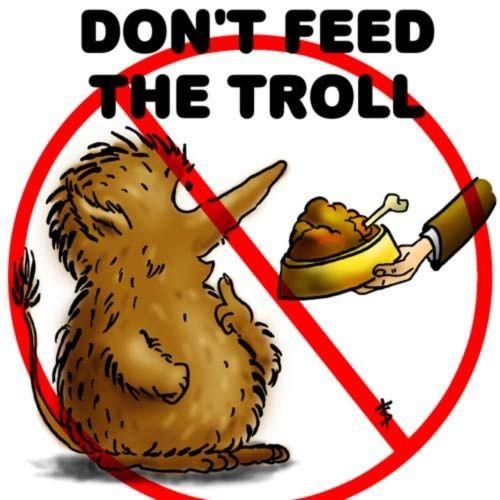 L'art du troll Sans_t14