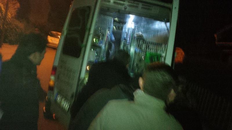 Arrivée camion du 7 mars 2015 - Page 5 Img_2015