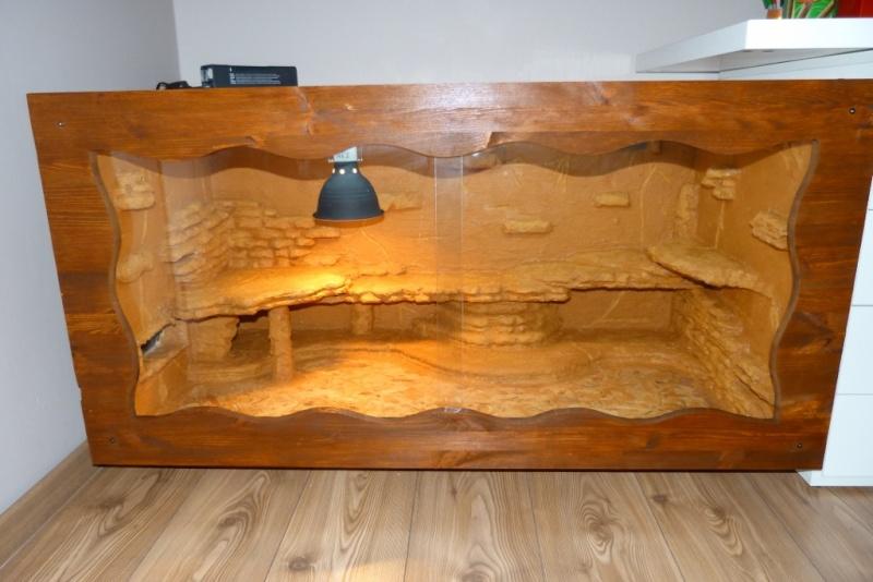 Nature bois terrarium pogona + ventilation - Page 3 P1080612