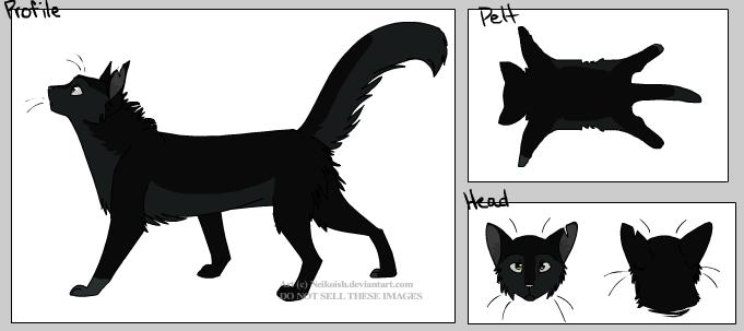 New cat form Captur11