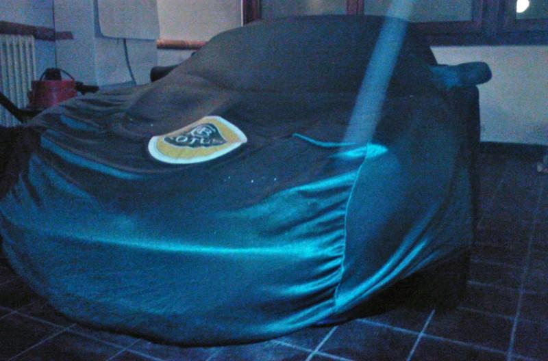 Lotus-ista per caso, incerto se vendere Elise110
