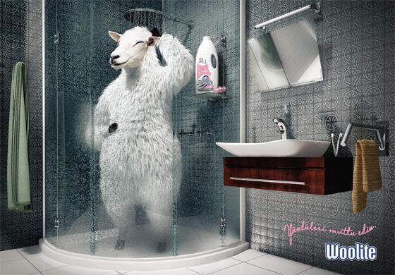[Jeu] Association d'images Sheep10
