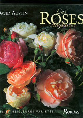 [Les roses anglaises] Roses_13