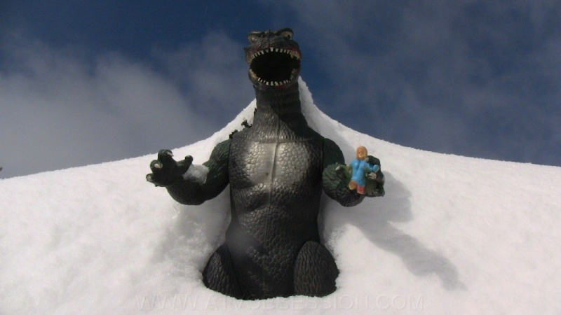 Update #1: From arctic freeze to possible Godzilla? - Page 13 20_go_10