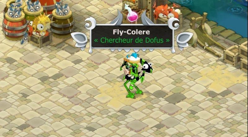 fly-colere Captur10