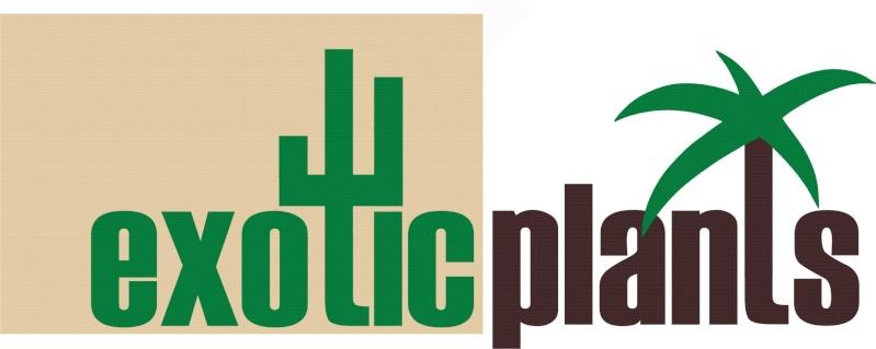 ExoticPlants - größter Sukkulentenhändler in Österreich Exotic11