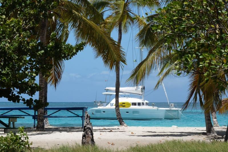 Croisière Grenadines, skipper et hotesse, 97221 Le-Carbet (Martinique) P1170710