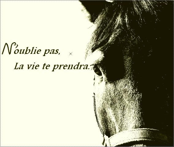 Mistyy  Horse_15