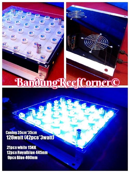 >> Custom LED BRC© << Img-2032