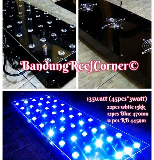 >> Custom LED BRC© << Img-2033