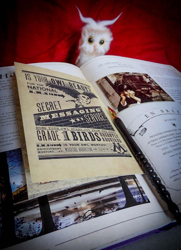 Nouveaux livres sur l'univers HP ? - Page 4 Dsc03011