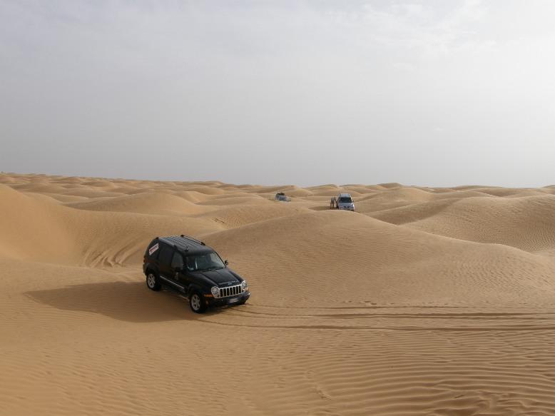 La mia compagna del deserto Img_0013