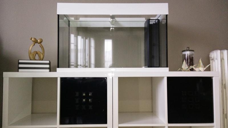 Aquarium 125L sur 2 meubles IKEA - Polysthyrène expansé Photo_11