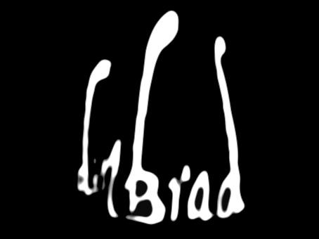 Fiche de présentation DIN BRAD Din_br10