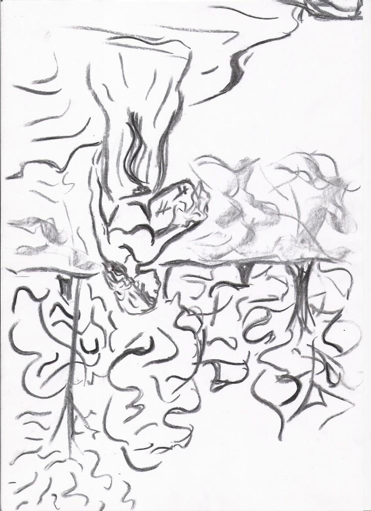 Imagens Desenho cabeça pra baixo Carvyo10