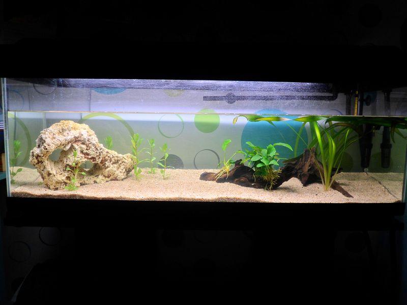 Premier Aquarium 120 litres 00518