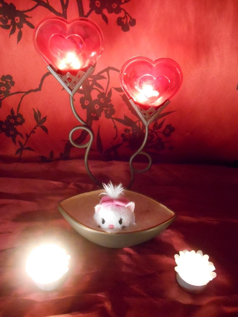 Concours : mettez en scène votre ou vos Tsum-Tsum ! ^^ - Page 7 Dscn1710