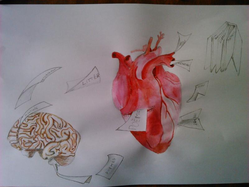 3 dessins après la présentation... Dsc_0611
