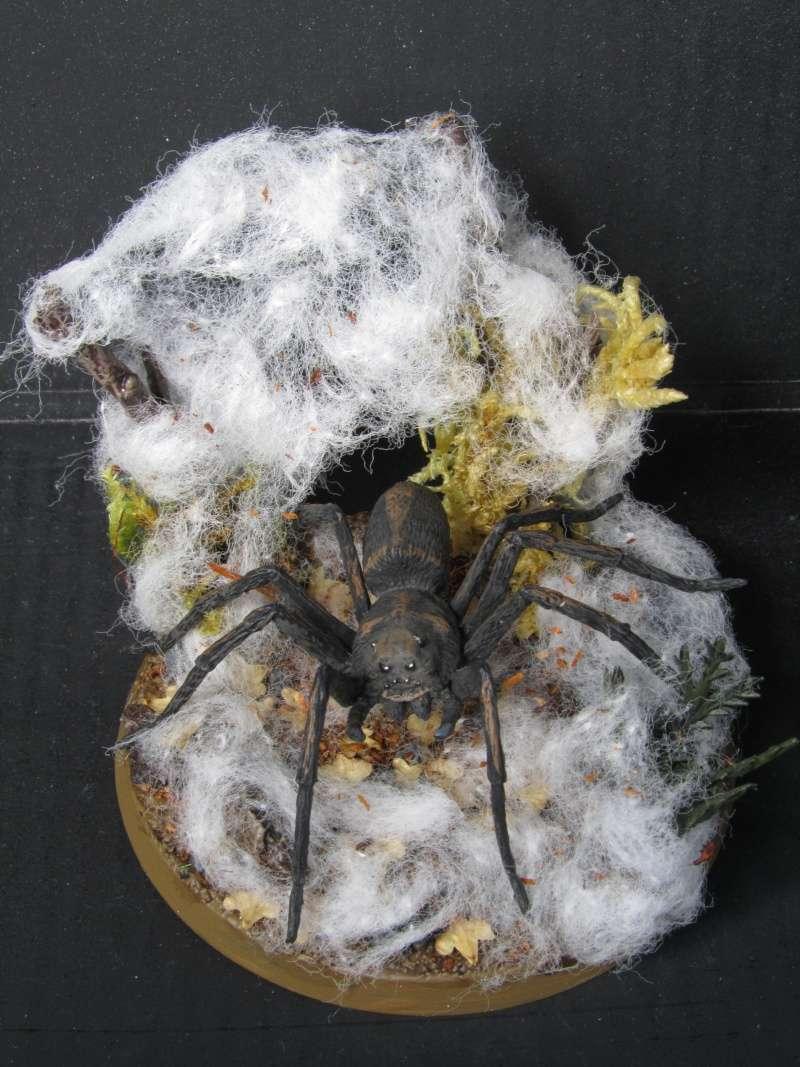 Arachnéides Mirkwoodiennes Araign11