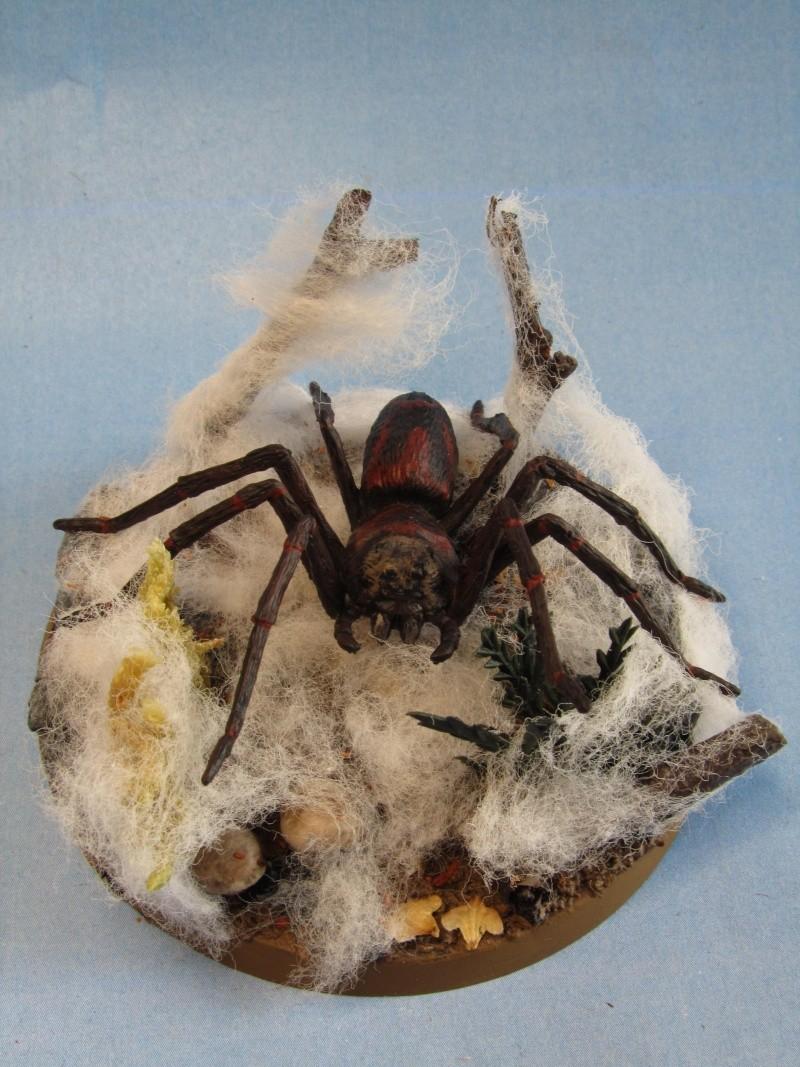 Arachnéides Mirkwoodiennes Araign12