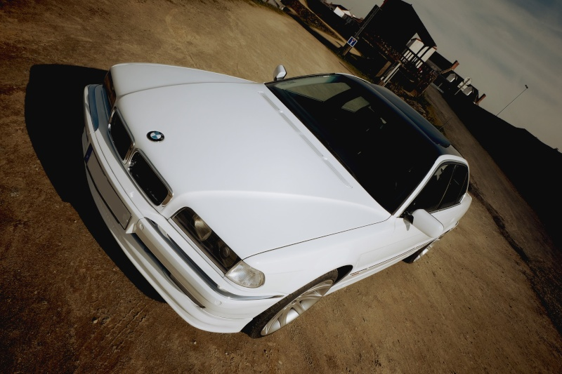 740ia blanche bi-tons de dingo 740110