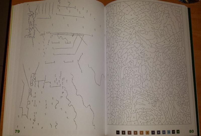 coloriage 100 coloriage mystère de chez Hachette 20150214