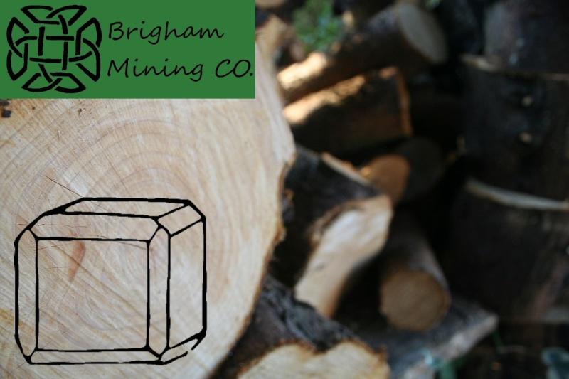 Brigham Mining CO. Lumber10