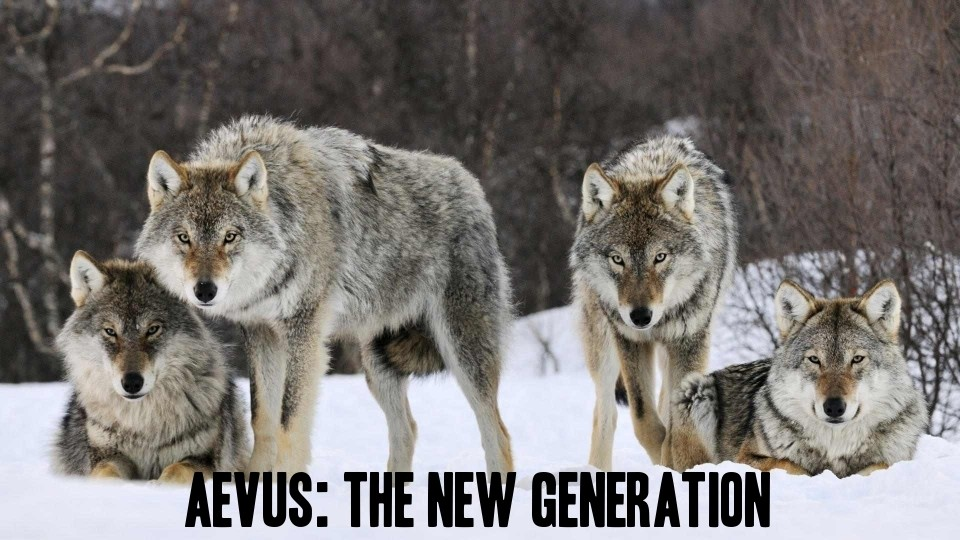 Aevus: The New Generation