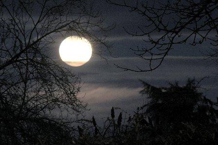 Les nuits de pleine Lune Pleine10