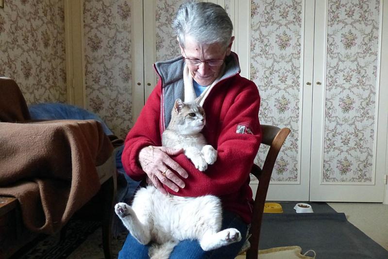 Gentil chat cherche panier retraite pour finir sa petite vie /15 - Page 2 P1100221