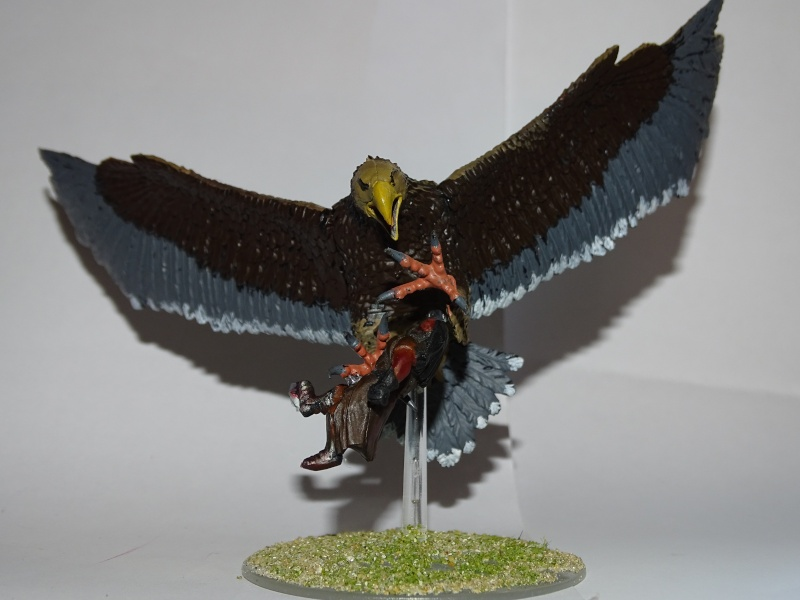 Aigles géants (The Hobbit) Dsc02022