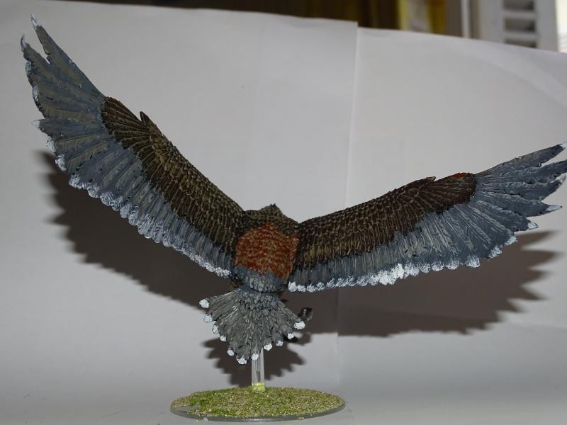 Aigles géants (The Hobbit) Dsc02023