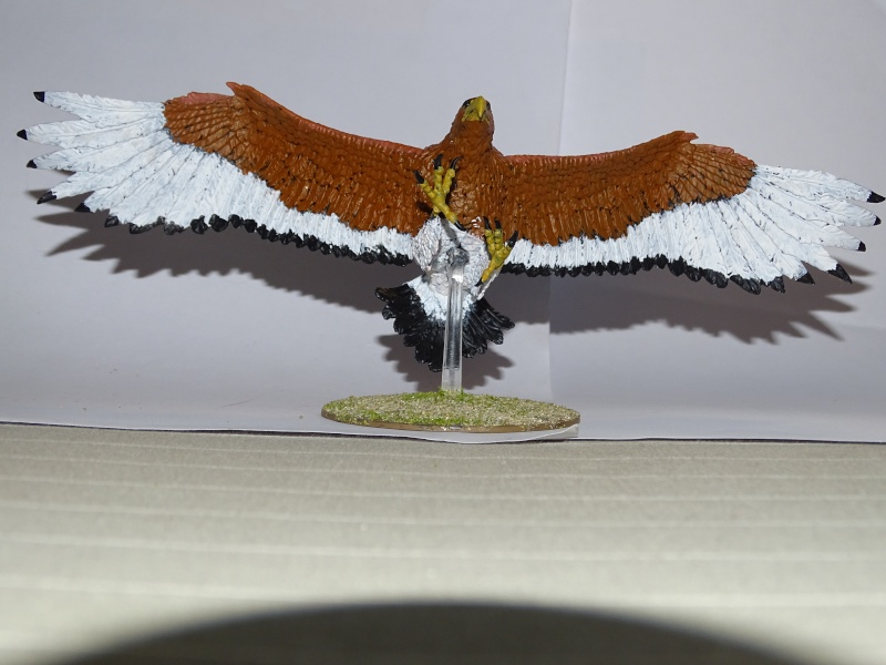 Aigles géants (The Hobbit) Dsc02024