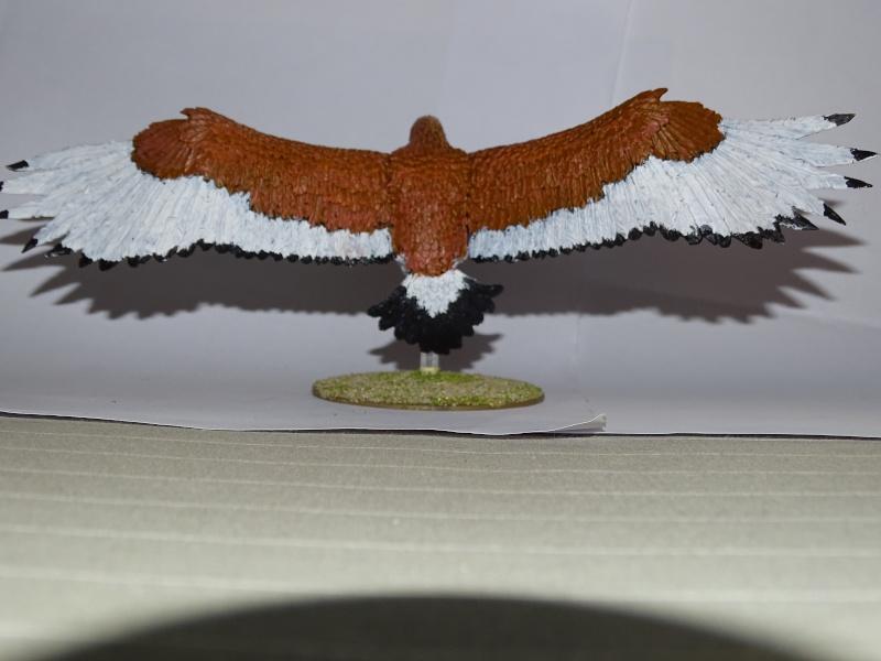 Aigles géants (The Hobbit) Dsc02025